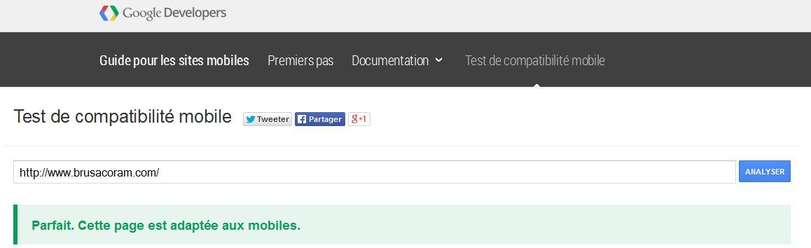 Outil de test de compatibilité mobile de Google